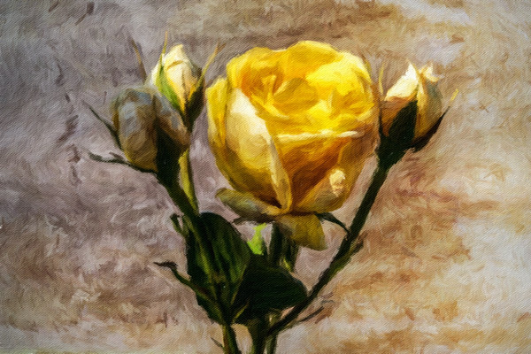 April 29 - Yellow rose of April.jpg