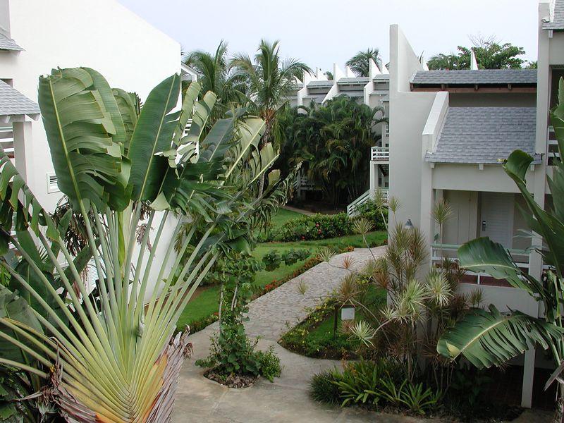 "Many ""condos"" at the portilla Resort graced the area."