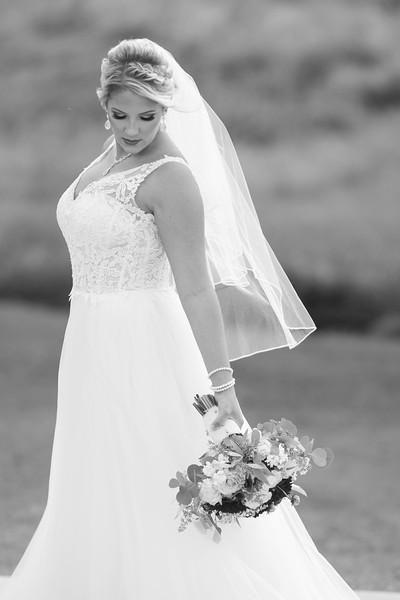 weddings (102 of 561).jpg