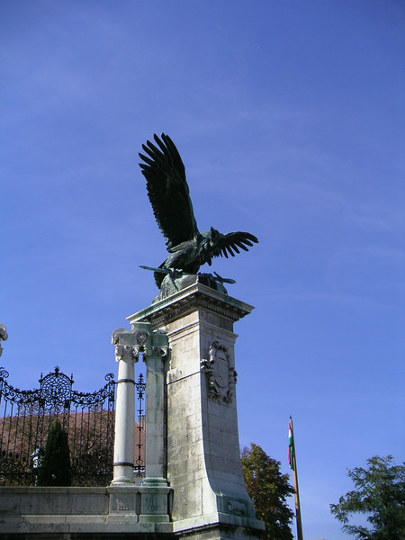 11 Flying Eagle.JPG