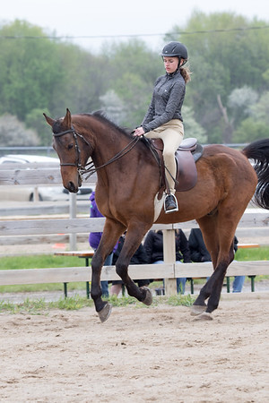 4H Fuzzy Horse Show - April 29, 2017
