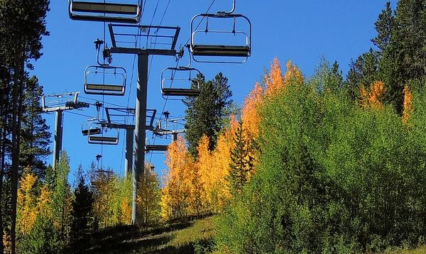 Autumn 2017
