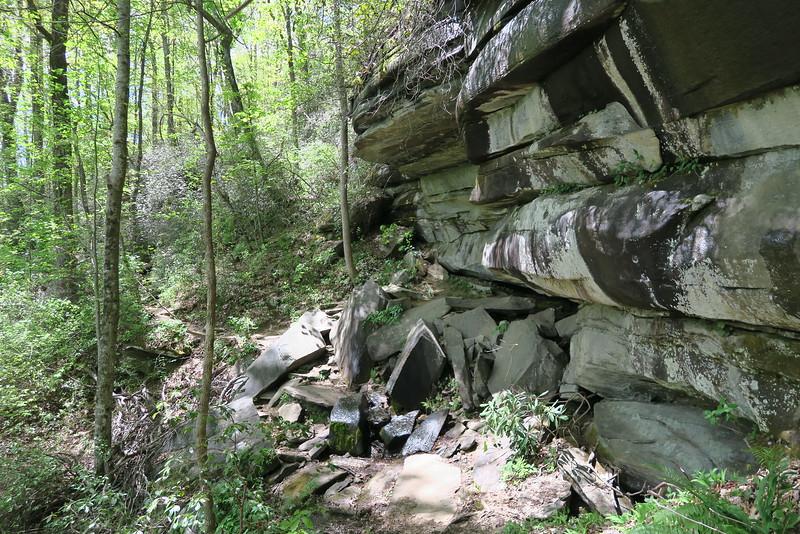 Pinnacle Mountain Trail - 2,150'