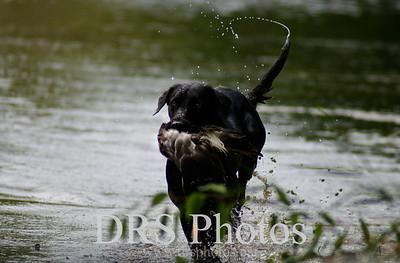 2011 Hunting Calendar Photos