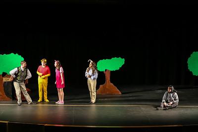 Matinee Performance