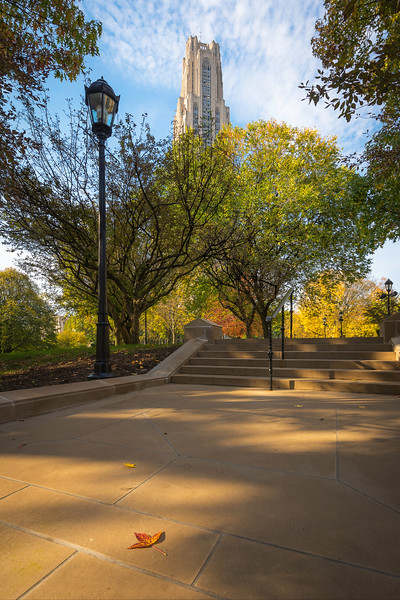 November 02, 2016 - Pitt Autumn - 3150 edited final 090419.jpg