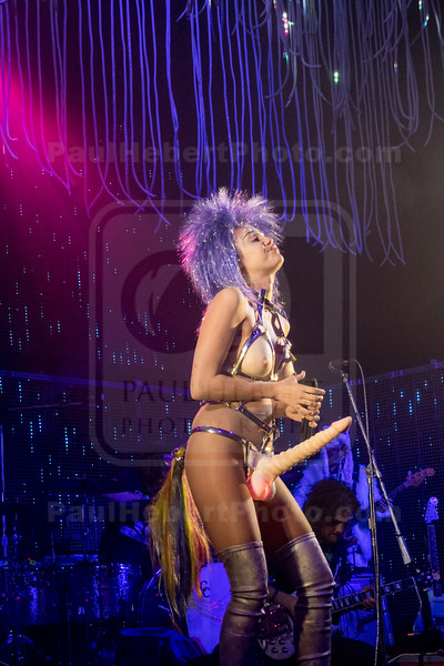 Miley Cyrus & Her Dead Petz In Concert - Chicago