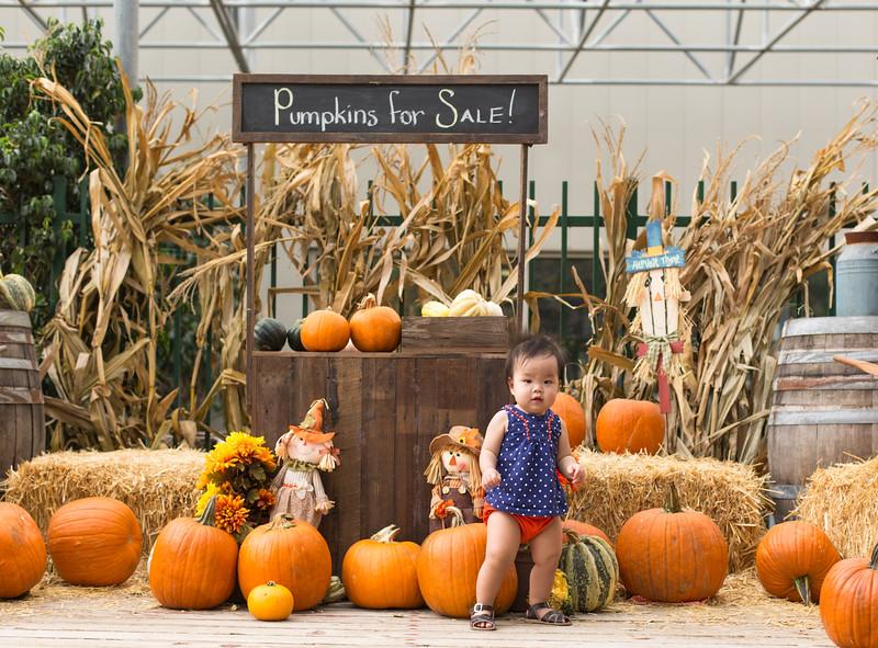 oliver_ella_pumpkin_patch-41.jpg