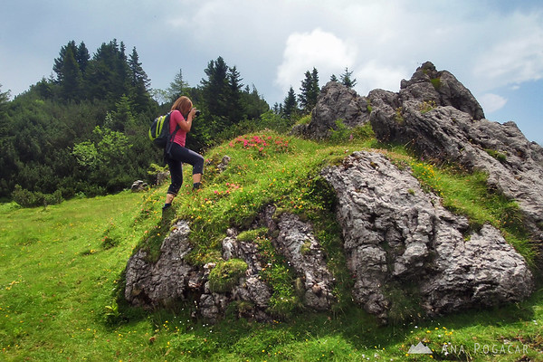 Hiking to Velika planina, July 2009