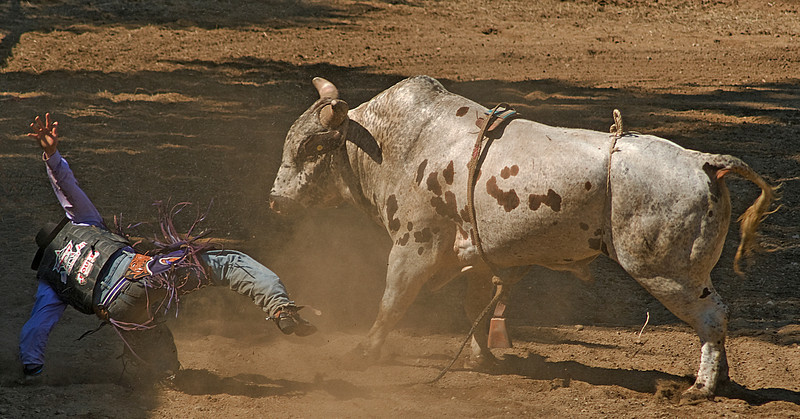 COOMBS RODEO-2009-3774A.jpg
