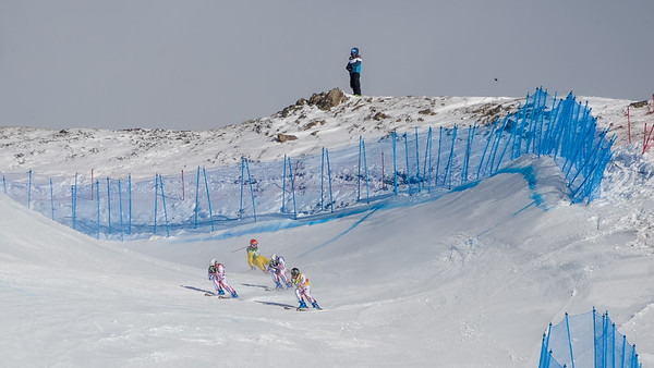Waltes | Audi FIS Ski Cross World Cup | season 2015/2016