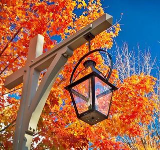 Autumn Colors Tour