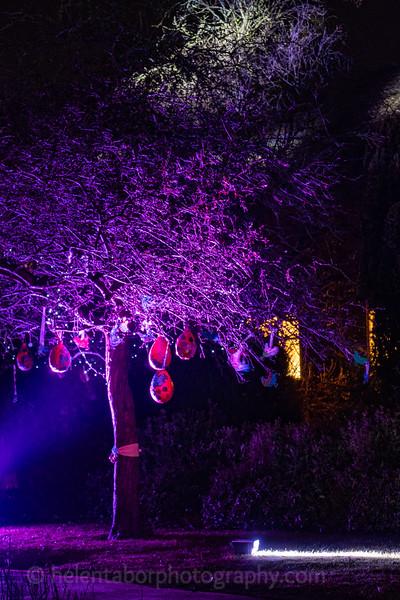 Illuminated Winter Wonderland by night-11.jpg