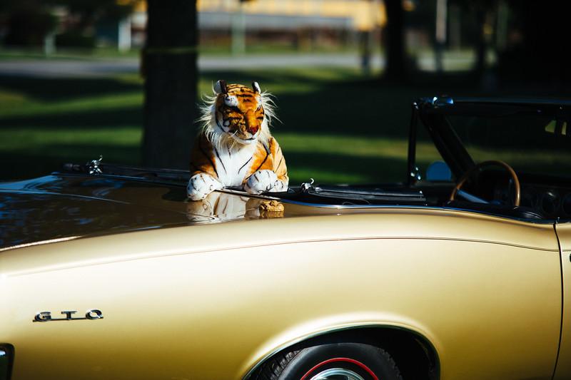 Hoosier Spring Tailgate 2013-4.jpg