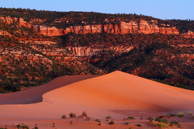 Coral Pink Sand Dunes - Sand Dunes-Shutterstock - KCOT.jpg