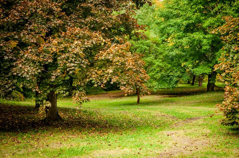 Arboretum_20151009-2372.jpg