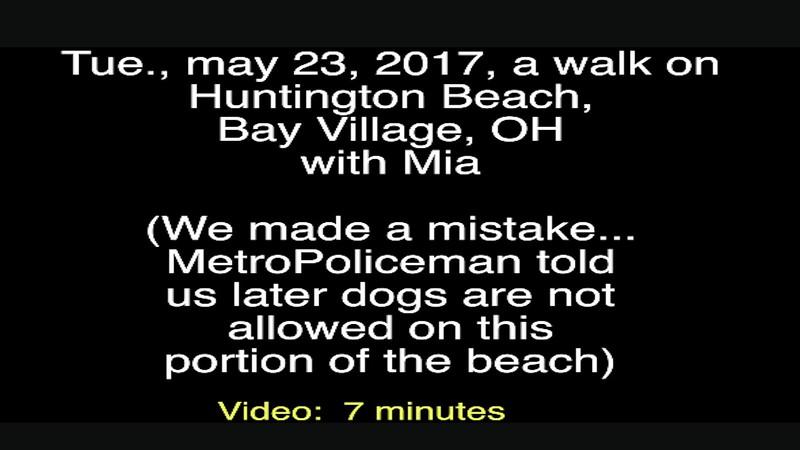 Video:  7 minutes ~~ Mia, Tue, May 23, 2017 at Bay Village, Huntington Beach, OH (Lake Erie)