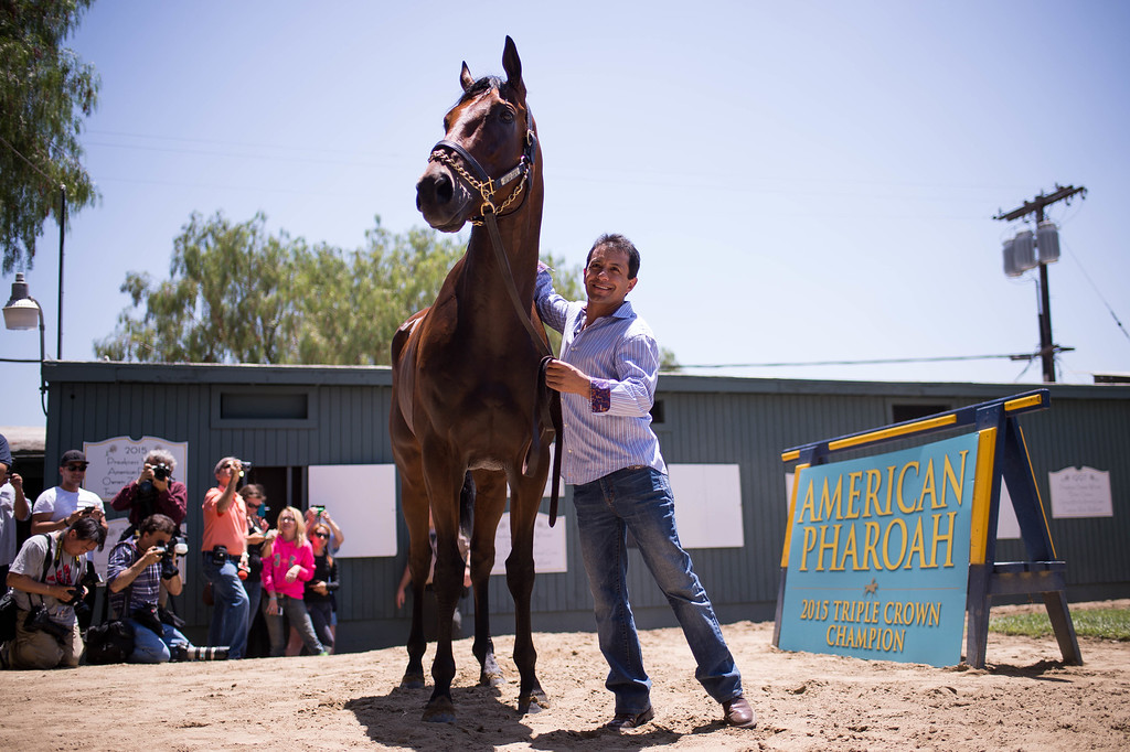 . Jockey Victor Espinoza parades around Triple Crown-winner American Pharoah as he returns home to Bob Baffert\'s barn at Santa Anita Thursday, June 18, 2015. American Pharoah and Espinoza broke a 37-year Triple Crown drought by winning the Kentucky Derby, Preakness and Belmont Stakes. (Photo by Sarah Reingewirtz/Pasadena Star-News)