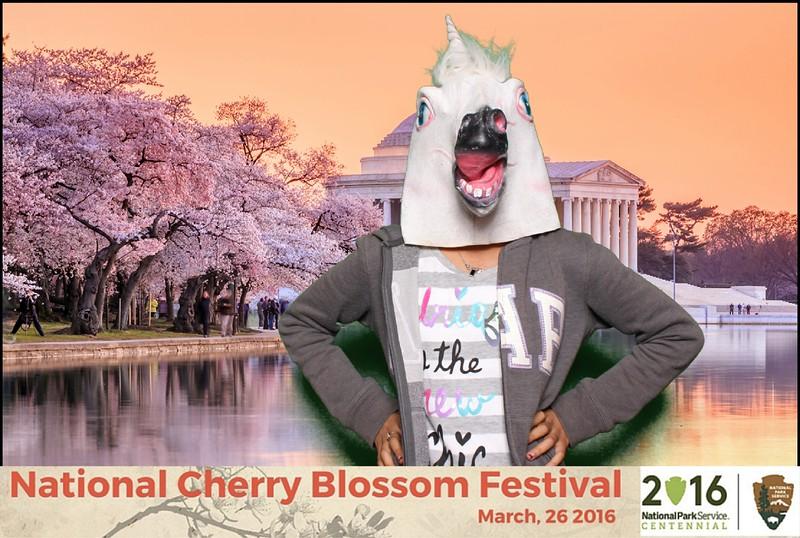 Boothie-NPS-CherryBlossom- (241).jpg