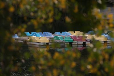 Lafayette Reservoir November 2008