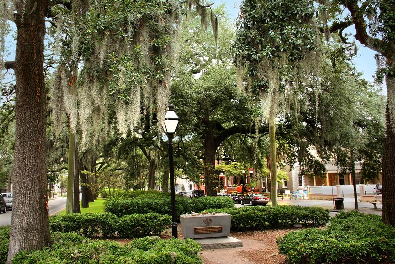 Savannah squares.jpg