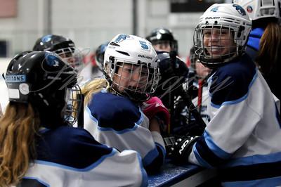 12U Girls vs. Duluth (Dec-19-2016)