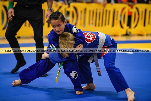 Texas Brazilian Jiu-Jitsu Federation (TXBJJF) - Dallas , TX- February 9, 2020