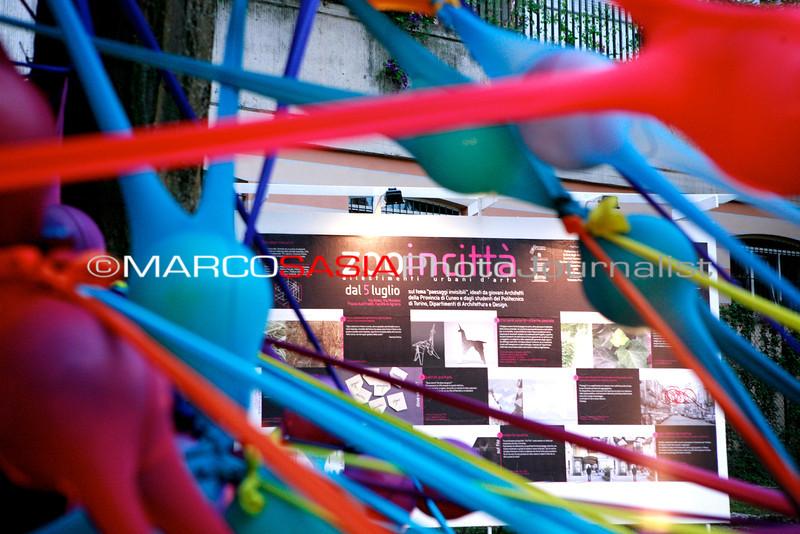 0095-zooart-01-2012.jpg