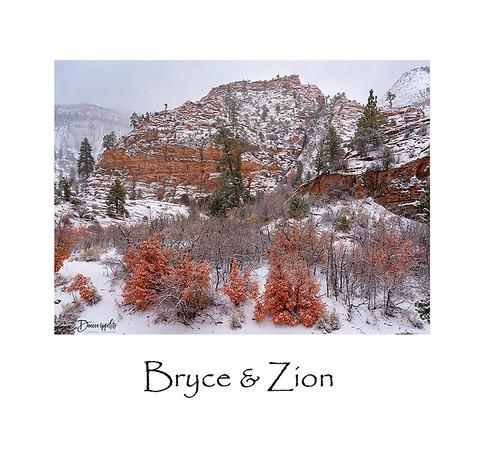 Bryce & Zion