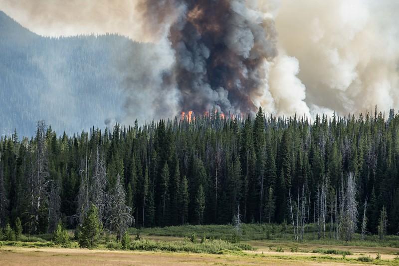 Aug 6 2019_Nethker Fire at Bergdorf01.JPG