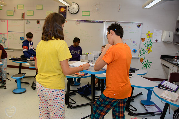 8th grade energy transfer