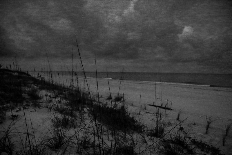 April 15 - Morning_ Indian Rocks Beachm Florida-1.jpg