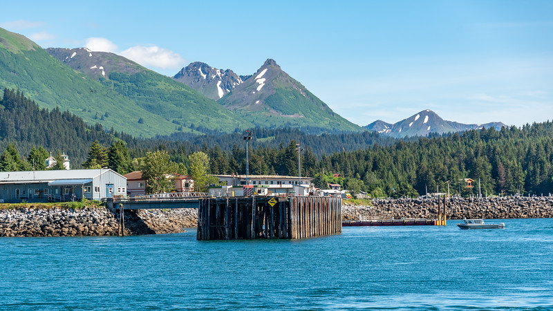 AlaskaSummer2018-1117.jpg