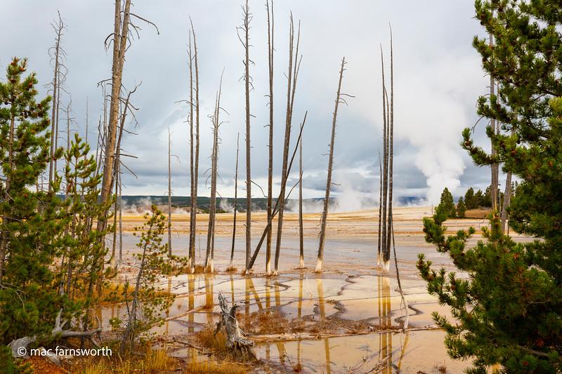 Yellowstone002September 30, 2018.jpg