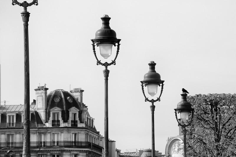 Paris Lamp Posts and Bird