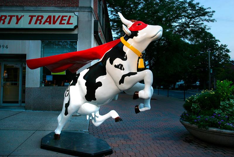Super Cow - A - WH027.jpg
