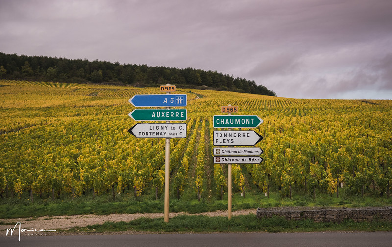 2019-10 - Burgundy Vacation-2946_edit.jpg