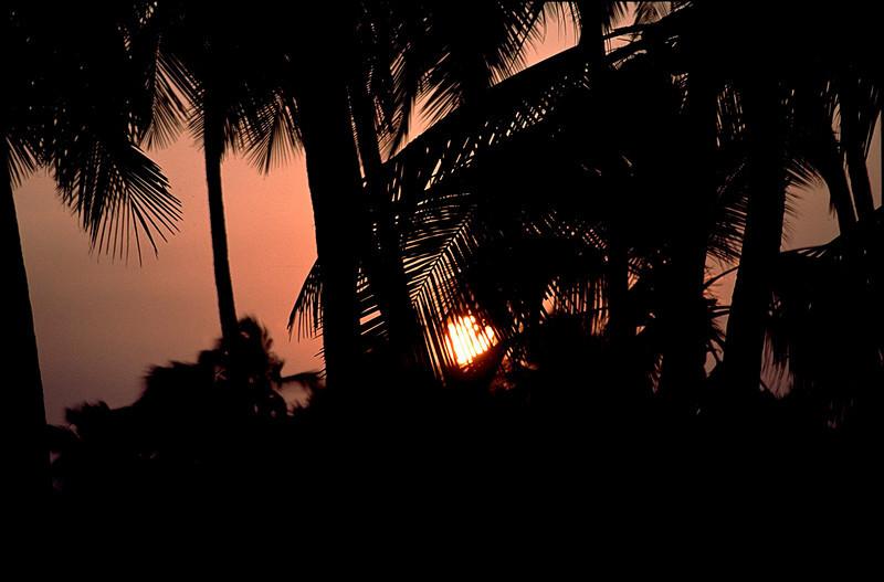 India1_055.jpg