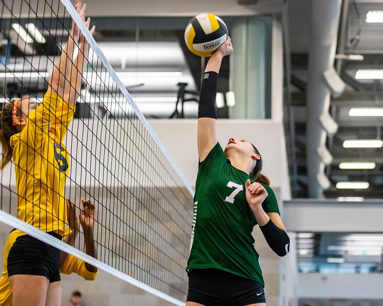 2018-Stvenson_Lady's_Volleyball-8.jpg