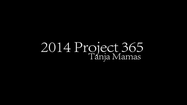 2014 Project 365