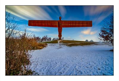 123 - Watergate Forest Park, Gateshead, Tyne & Wear, UK – 2021.