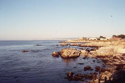 California (CA)