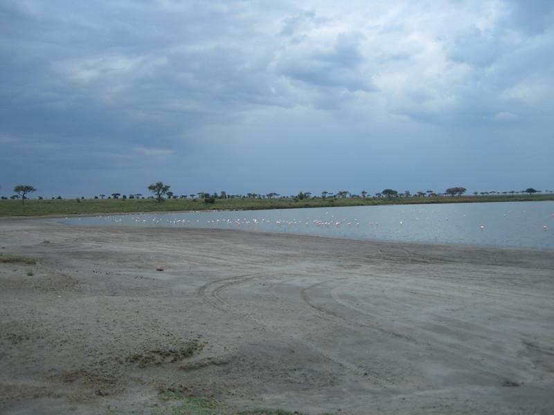 Tanzania14-3536.jpg