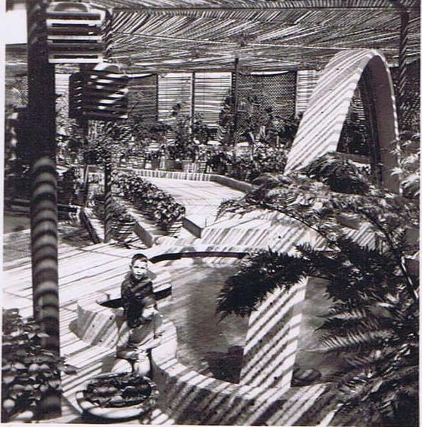 Interior da Estufa