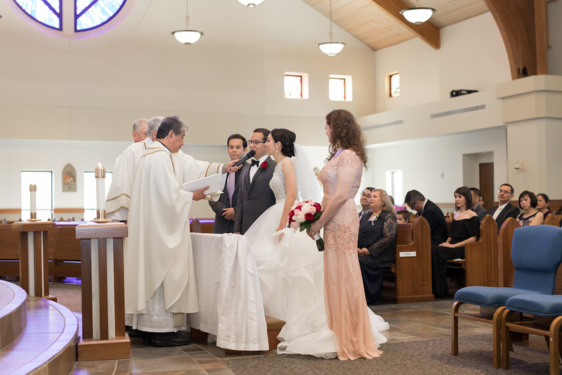 Houston Wedding Photography ~ Norma and Abe-1219.jpg