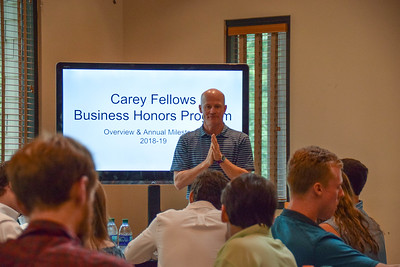 Carey Fellows