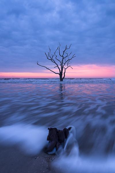 Tree and rock at Boneyard Beach.jpg