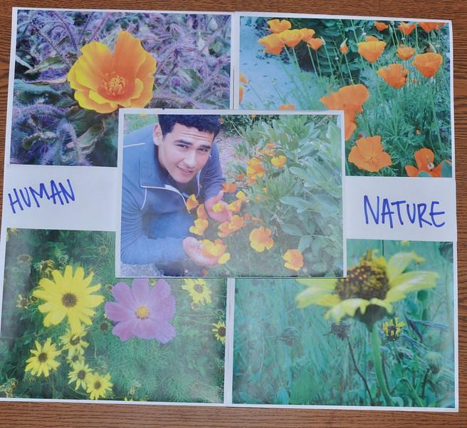 Eco-Interns_Billboard_HumanNature_idea.JPG