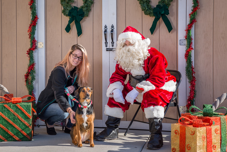 Pet Pictures With Santa-72.jpg