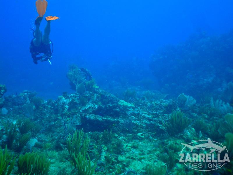 """Swimming Over the Proselyte's Anchor"" (Proselyte Wreck, St. Maarten)"